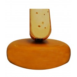 Hollander Alter Premium- Gouda